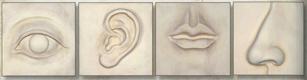 Eye Ear Nose Lips Plaque wall decor